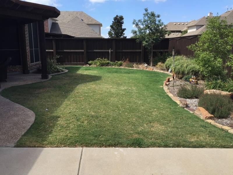 DFW Turf Sales - park  | Photo 10 of 10 | Address: 4428 Burnhill Dr, Plano, TX 75024, USA | Phone: (214) 738-3840