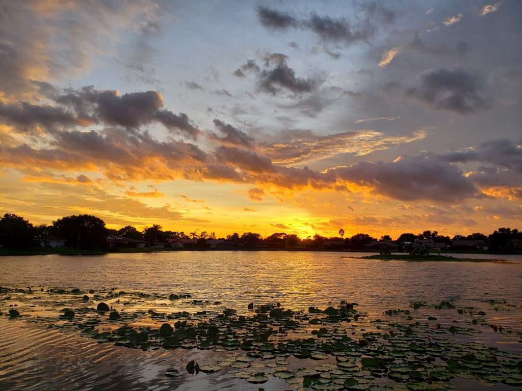 Suntree Interlachen Park - park  | Photo 4 of 10 | Address: 409 Interlachen Rd, Melbourne, FL 32940, USA | Phone: (321) 242-8960