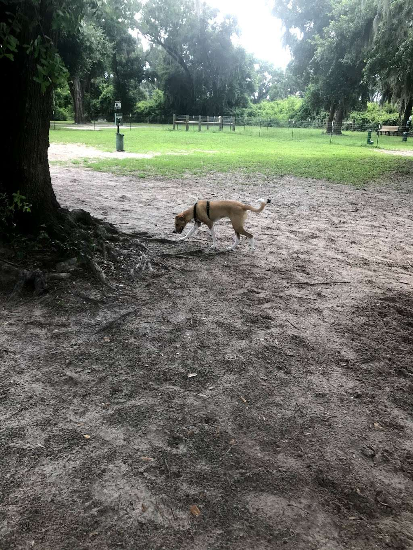 BarkPark of Wildwood - park  | Photo 5 of 10 | Address: 3901-3999 Co Rd 144, Wildwood, FL 34785, USA
