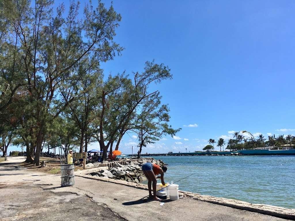Haulover Park Bayside Picnic Area - park  | Photo 8 of 10 | Address: 13401 Collins Ave, Miami Beach, FL 33154, USA