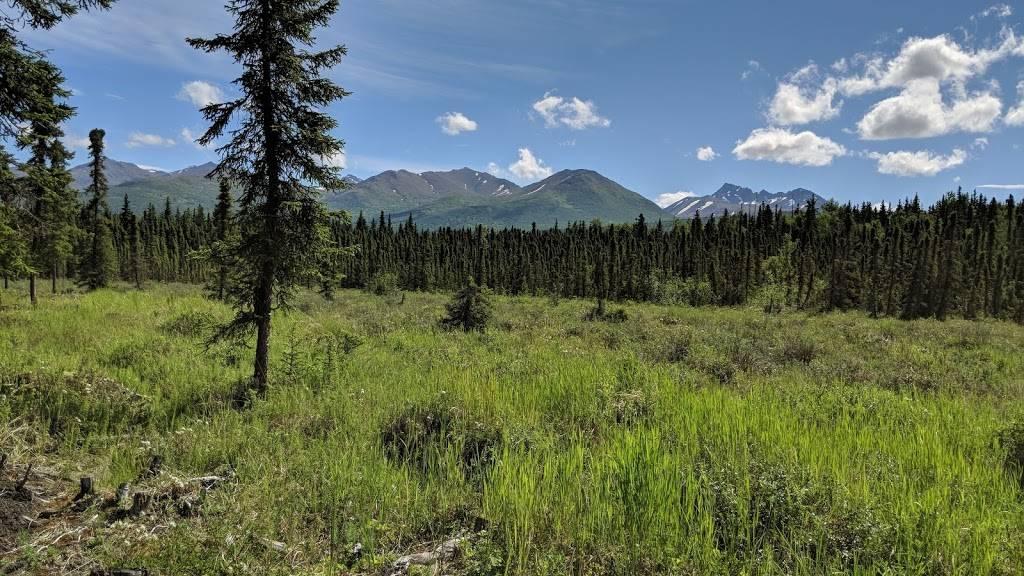Far North Bicentennial Park - park  | Photo 9 of 10 | Address: 4970 Campbell Airstrip Rd, Anchorage, AK 99507, USA | Phone: (907) 343-4355