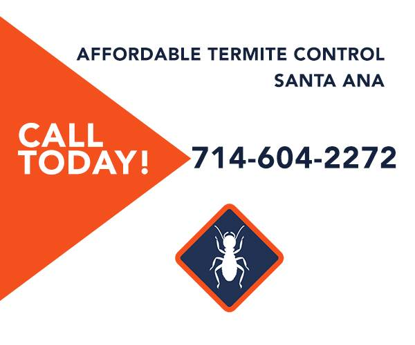 Affordable Termite Control In Santa Ana CA - home goods store  | Photo 8 of 10 | Address: 2026 Deodar St, Santa Ana, CA 92705, USA | Phone: (714) 604-2722
