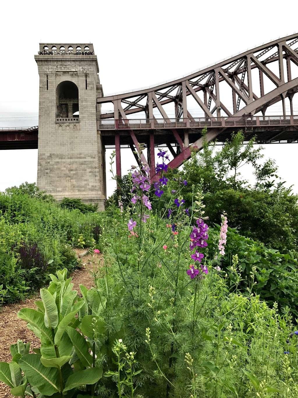 Native Plant Garden - park  | Photo 6 of 8 | Address: 11 Wards Meadow Loop, New York, NY 10035, USA