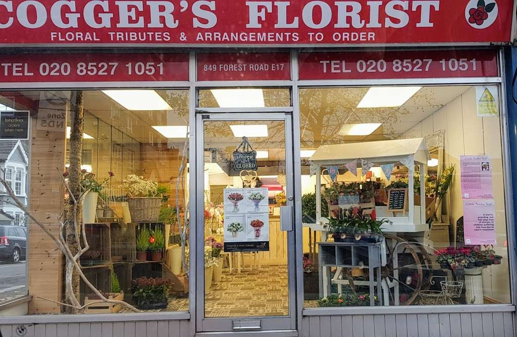 Coggers in Bloom - florist  | Photo 3 of 10 | Address: 849 Forest Rd, Walthamstow, London E17 4AT, UK | Phone: 020 8527 1051