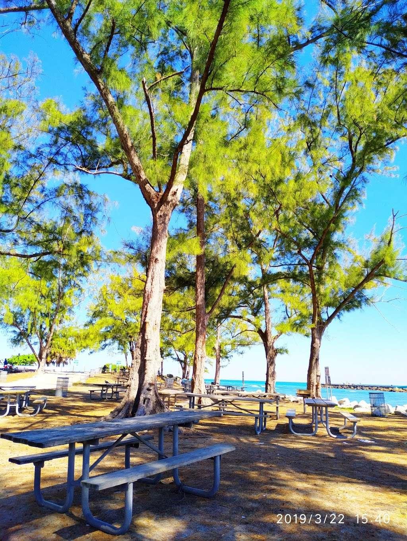 Haulover Park Bayside Picnic Area - park  | Photo 10 of 10 | Address: 13401 Collins Ave, Miami Beach, FL 33154, USA