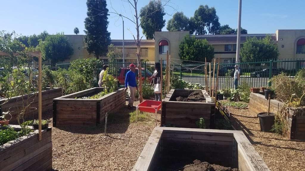 Belvedere Park Community Garden - park  | Photo 5 of 9 | Address: 337 N Mednik Ave, East Los Angeles, CA 90022, USA