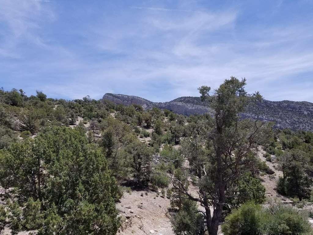 Camp Potosi Park - park    Photo 1 of 10   Address: 11480 Mount Potosi Canyon Rd, Las Vegas, NV 89124, USA   Phone: (702) 455-8200