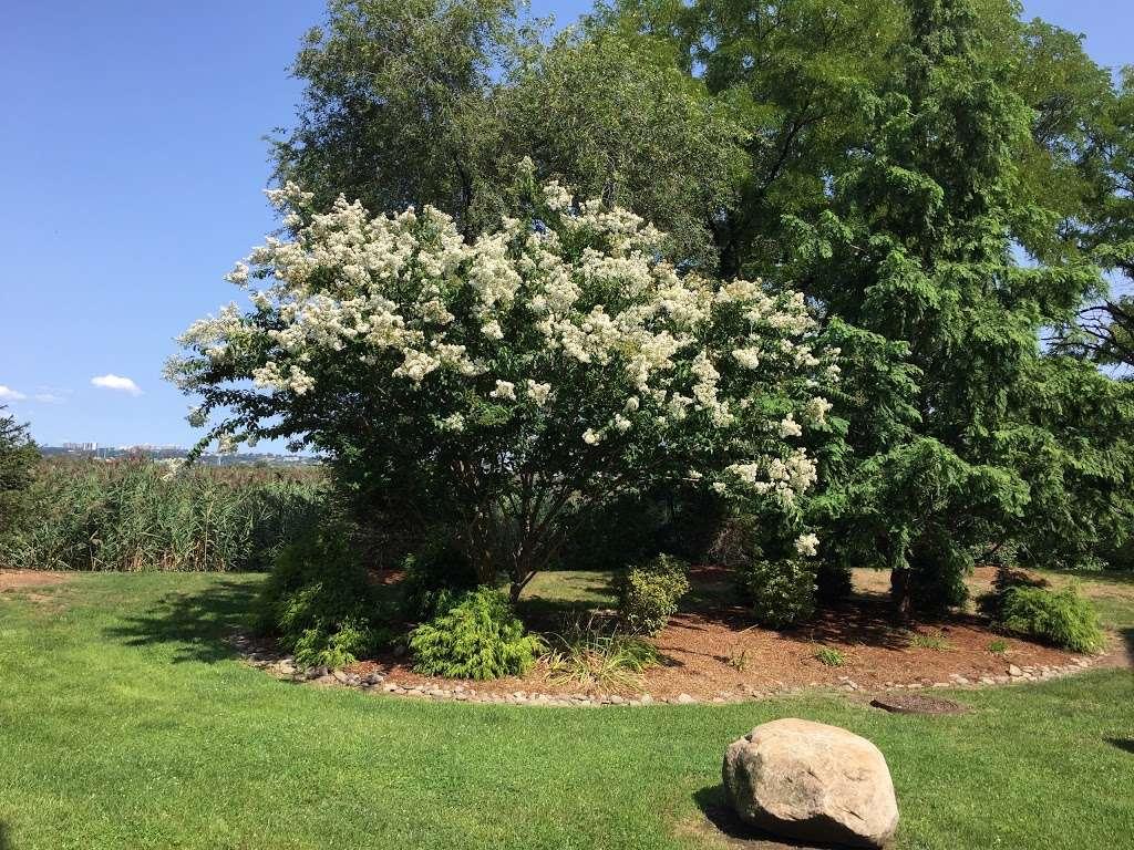 Sadhu Vaswani Meditation Garden - park  | Photo 2 of 10 | Address: 1200 Koelle Blvd, Secaucus, NJ 07094, USA