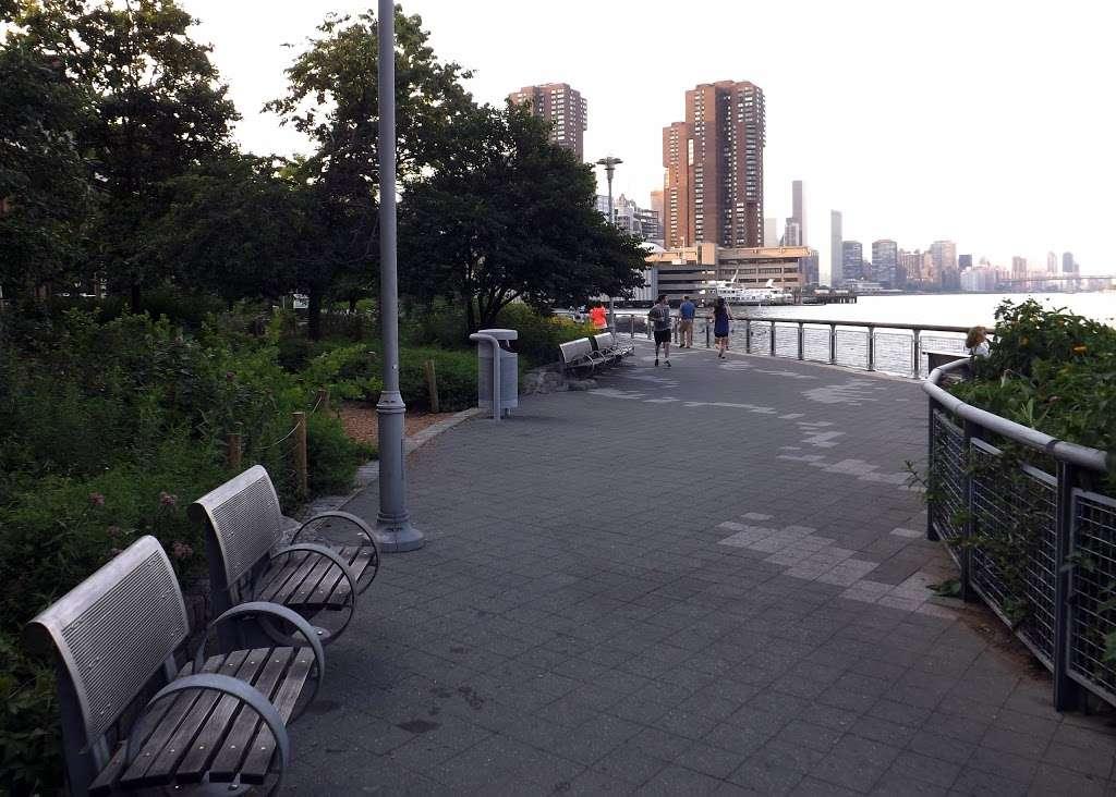 East River Promenade - park  | Photo 6 of 10 | Address: East River Promenade, New York, NY 10002, USA