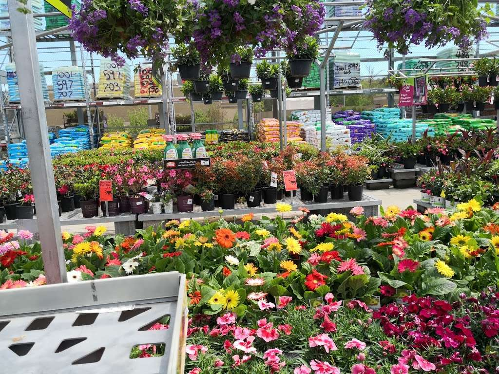 Garden Center At The Home Depot 181 S Gulph Rd King Of Prussia Pa 19406 Usa