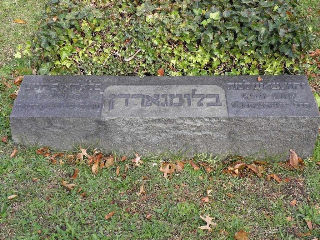 Montefiore Cemetery - cemetery  | Photo 9 of 10 | Address: 121-83 Springfield Blvd, Jamaica, NY 11413, USA | Phone: (718) 528-1700