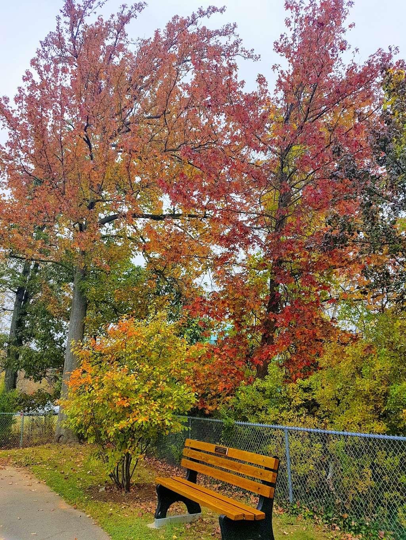 Witte Field Johnson Field - park  | Photo 5 of 10 | Address: 39-43 Johnson Ave, Englewood Cliffs, NJ 07632, USA