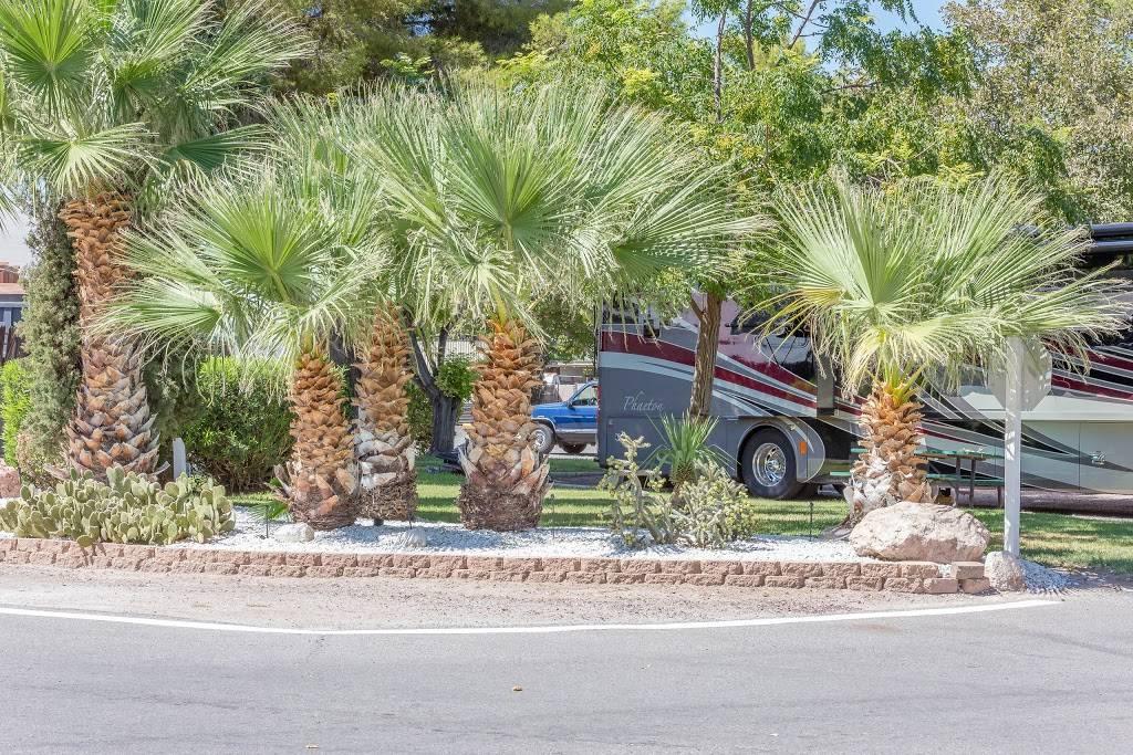 Thousand Trails Las Vegas RV Resort - campground  | Photo 3 of 9 | Address: 4295 Boulder Hwy, Las Vegas, NV 89121, USA | Phone: (702) 451-2719