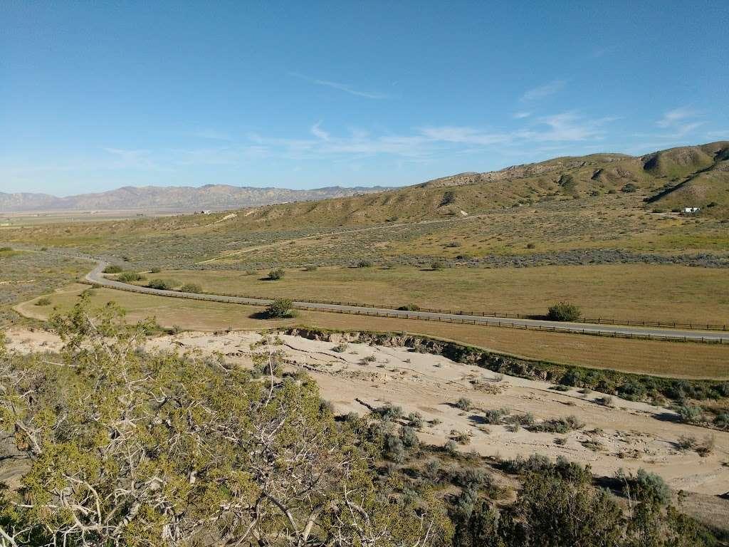 Songdog Ranch - campground    Photo 8 of 9   Address: 680 Ballinger Canyon Rd, Maricopa, CA 93252, USA   Phone: (661) 766-2454