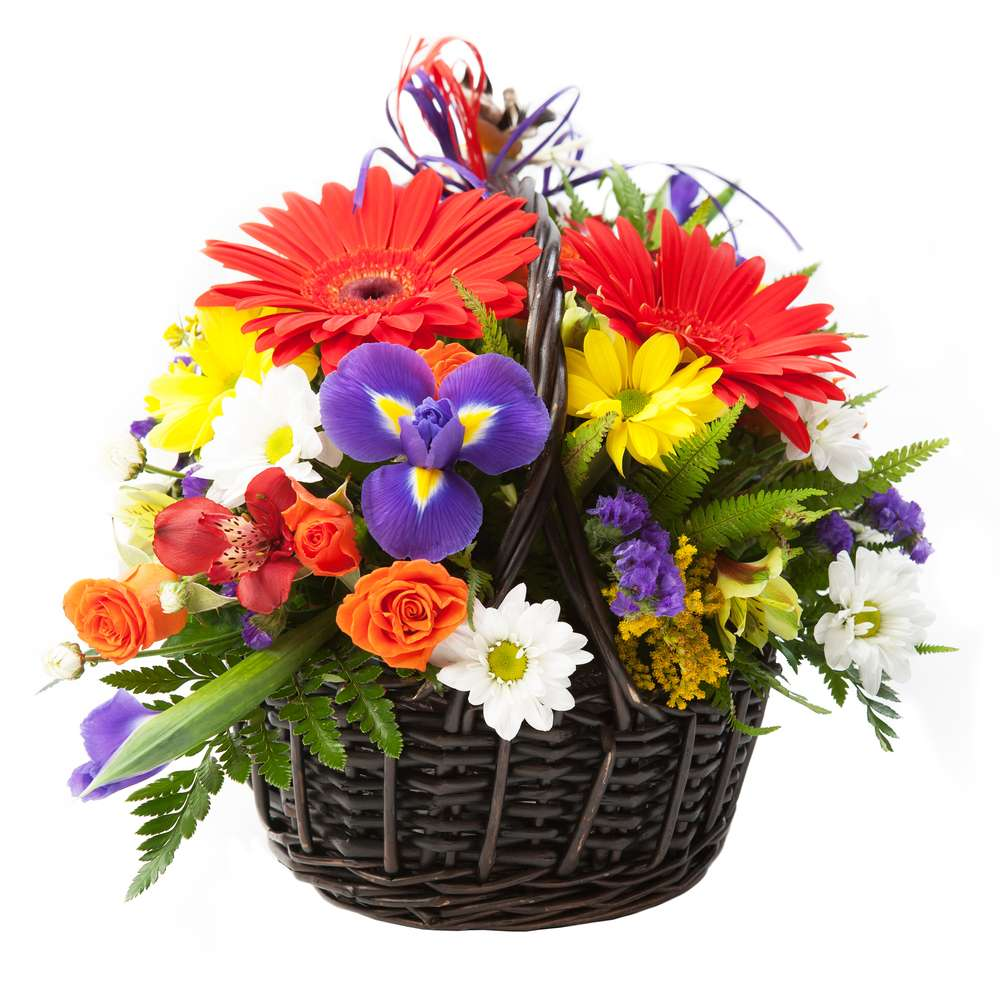 Carrolls Flowers - florist  | Photo 1 of 4 | Address: 1343 E Lycoming St, Philadelphia, PA 19124, USA | Phone: (215) 533-2884