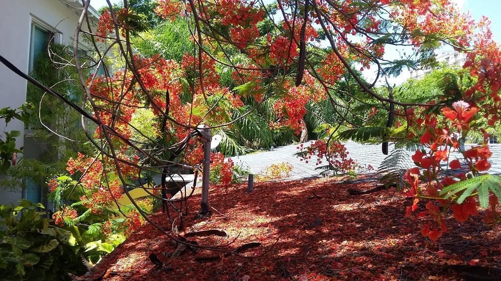Douglas Park - park  | Photo 7 of 9 | Address: 2755 SW 37th Ave, Miami, FL 33133, USA | Phone: (305) 461-6805