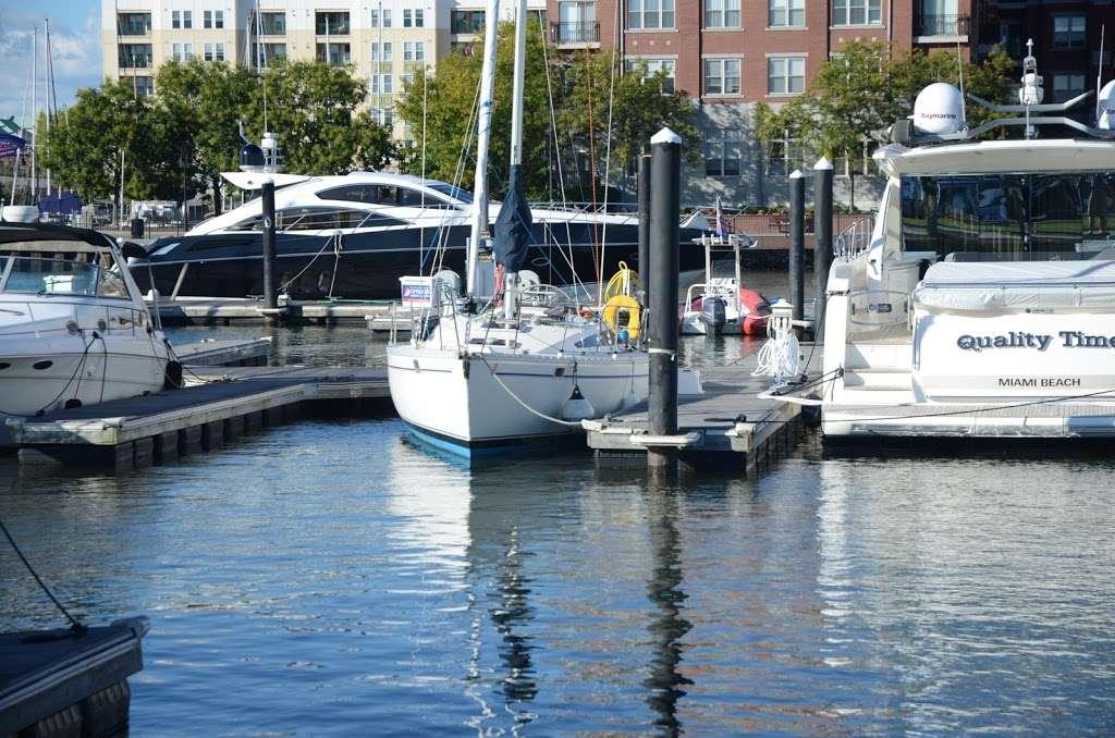 Gotham Sailing - travel agency  | Photo 3 of 10 | Address: 80 Audrey Zapp Dr, Jersey City, NJ 07305, USA | Phone: (732) 820-0290