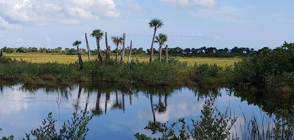 Blackpoint Wildlife Drive Entrance - park  | Photo 6 of 10 | Address: Blackpoint Wildlife Dr, Titusville, FL 32796, USA
