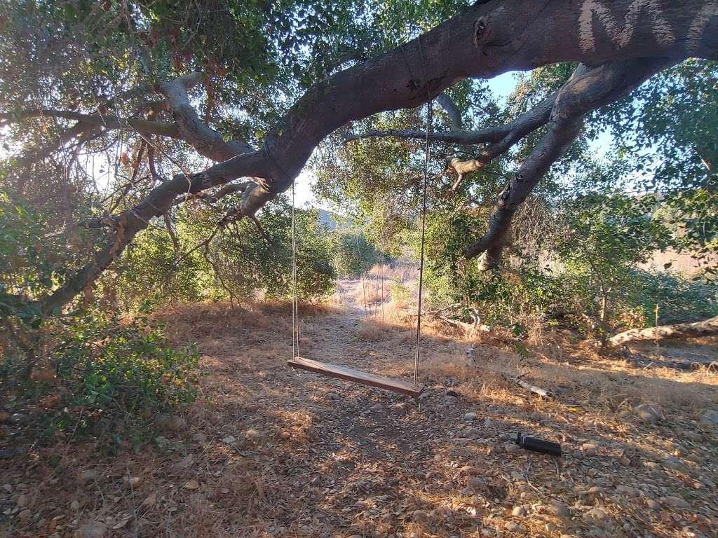 Tree House Park San Diego Ca 92128 Usa