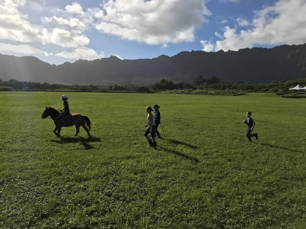 Hawaii Polo Lessons - travel agency  | Photo 5 of 8 | Address: 41-1062 Kalanianaʻole Hwy, Waimanalo, HI 96795, USA | Phone: (808) 421-9874
