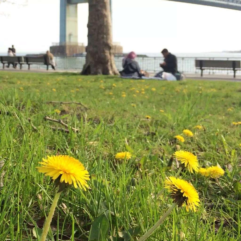 Bay Ridge Promenade (Start) - park  | Photo 9 of 10 | Address: Brooklyn, NY 11209, USA