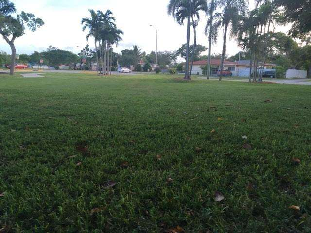 Sauls Park - park  | Photo 1 of 6 | Address: NE 13th Ave, North Miami Beach, FL 33162, USA