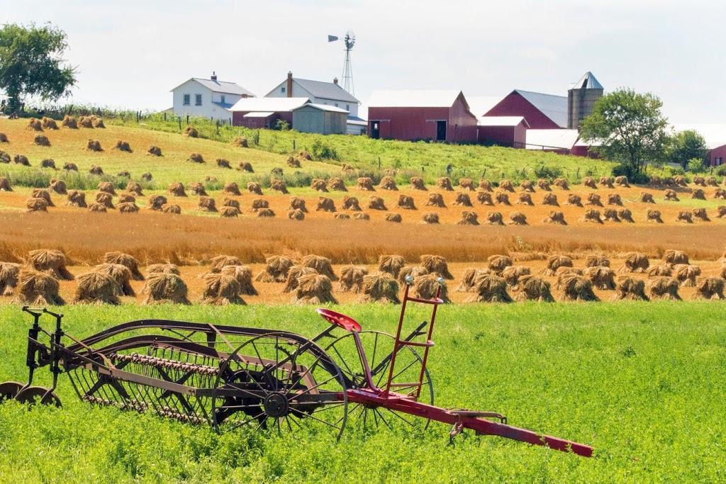 Becki Ross: State Farm Insurance Agent - insurance agency  | Photo 8 of 9 | Address: 1908 Yaupon Trail Ste B202, Cedar Park, TX 78613, USA | Phone: (512) 260-7199