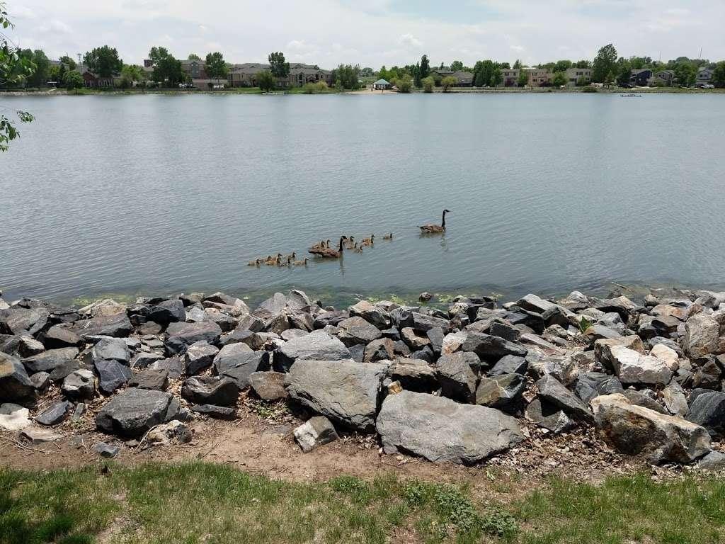 Hunters Glen Lake Park - park    Photo 9 of 10   Address: Thornton, CO 80241, USA   Phone: (303) 255-7830