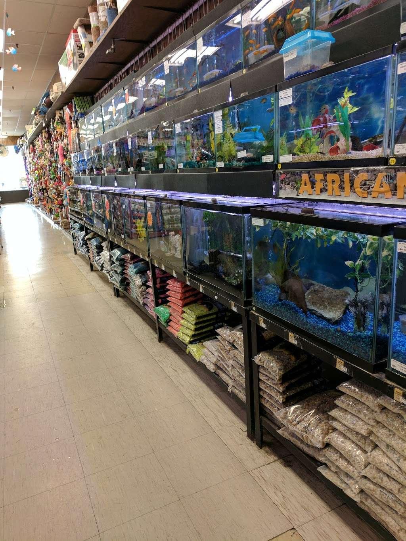 Petland Discounts - Jersey City - pet store  | Photo 5 of 10 | Address: Rt 440 & Kellogg Street, Stadium Plaza, Jersey City, NJ 07305, USA | Phone: (201) 435-9217