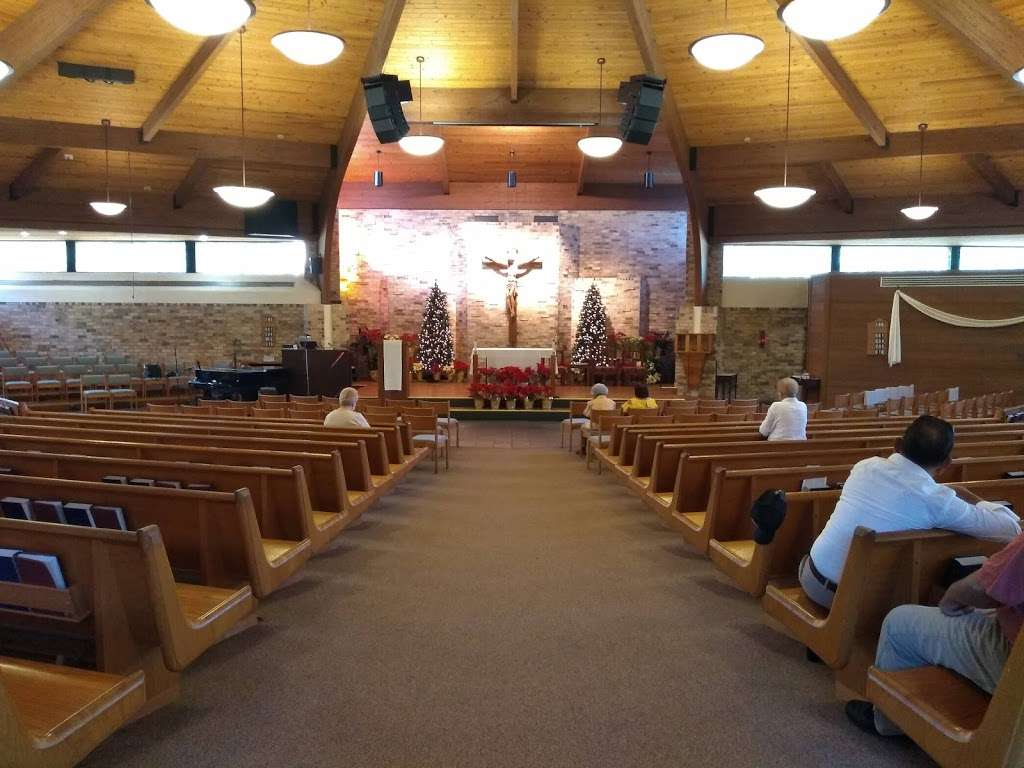 St. Francis of Assisi Catholic Church - church    Photo 1 of 10   Address: 834 S Orange Blossom Trail, Apopka, FL 32703, USA   Phone: (407) 886-4602