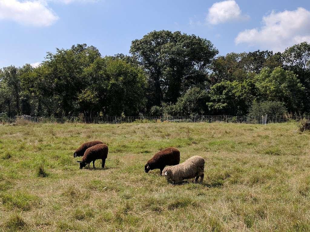 Rock Meadow Conservation Area - park  | Photo 5 of 10 | Address: Belmont, MA 02478, USA