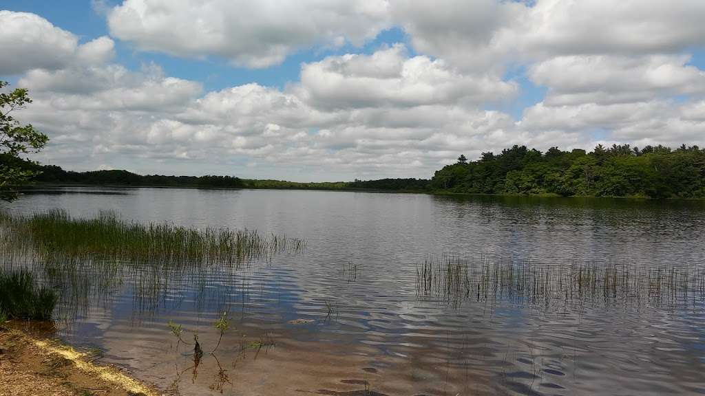 Harry C. Darling Wildlife Management Area - park  | Photo 3 of 10 | Address: 305 Black Mallard Rd, Raynham, MA 02767, USA