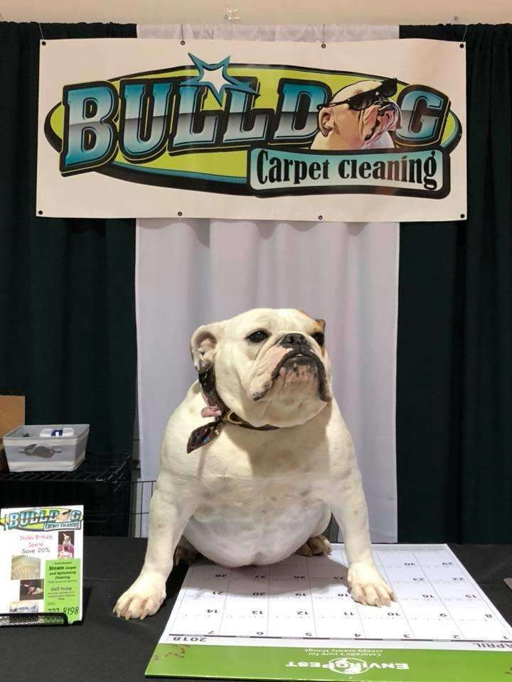 Bulldog Carpet Cleaning Laundry 6398 Pumpkin Ridge Dr
