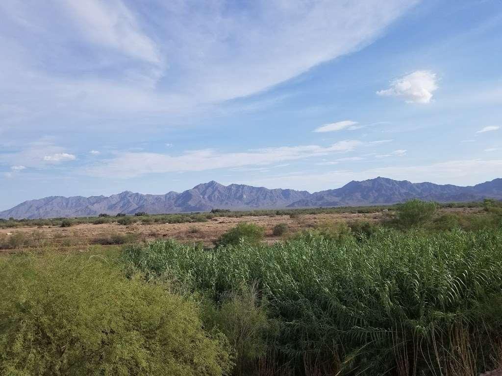 Tres Rios Wetlands Hayfield Site - park  | Photo 10 of 10 | Address: 8209 S 70th Ln, Laveen Village, AZ 85339, USA