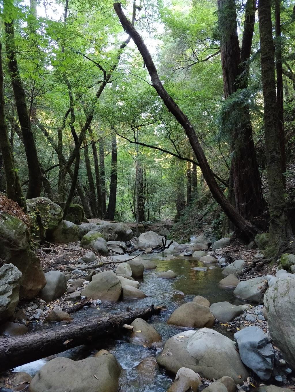 Sam Trail - park  | Photo 7 of 10 | Address: 15808 Sanborn Rd, Saratoga, CA 95070, USA