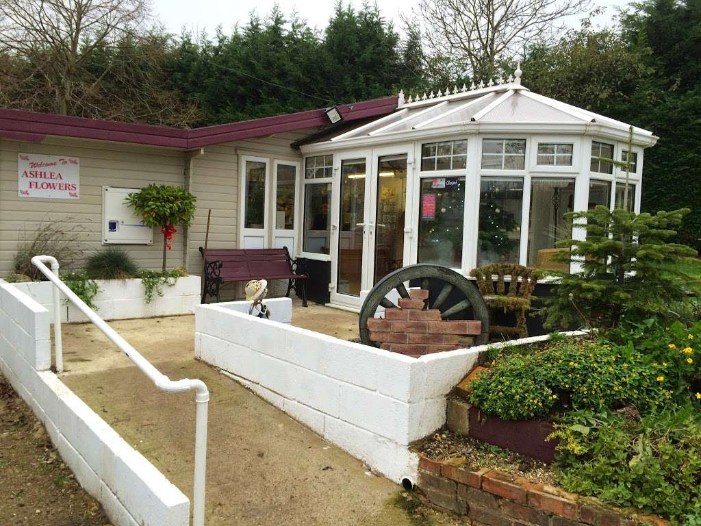 Ashlea Flowers - florist  | Photo 3 of 5 | Address: Ashlea Nursery, Birchwood Rd, Dartford DA2 7HQ, UK | Phone: 01322 666555
