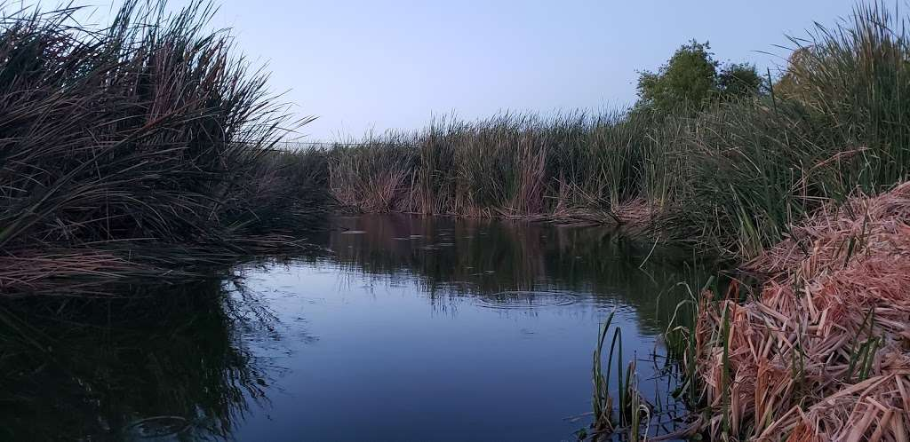 Tres Rios Wetlands Hayfield Site - park  | Photo 2 of 10 | Address: 8209 S 70th Ln, Laveen Village, AZ 85339, USA
