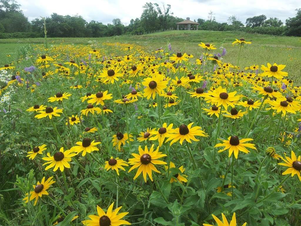 Pennington Park - park  | Photo 10 of 10 | Address: 801 Creek Rd, Delanco, NJ 08075, USA | Phone: (609) 265-5858