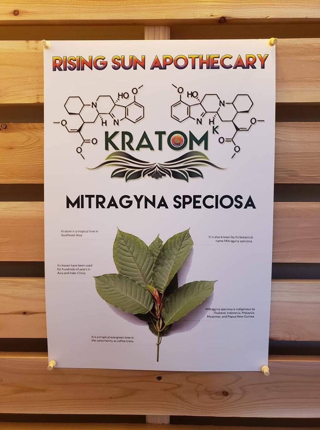 Rising Sun Kratom Shop - health  | Photo 5 of 10 | Address: Across from Srivilai Thai, 3220 California Ave SW #129, Seattle, WA 98116, USA | Phone: (206) 229-2500
