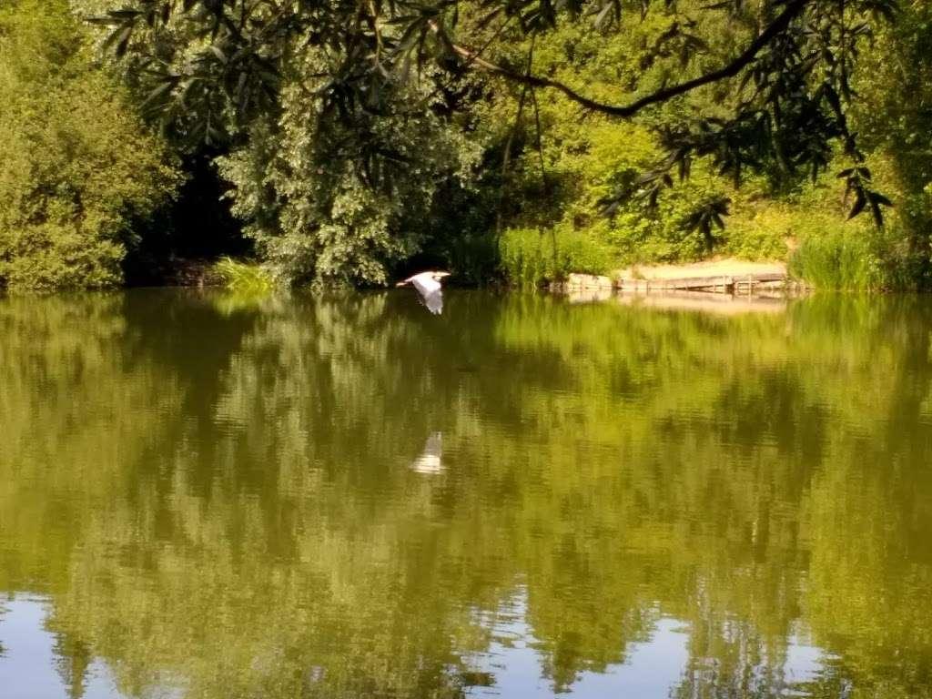 Holwell Hyde - park  | Photo 1 of 10 | Address: Welwyn Garden City AL7 4AA, UK