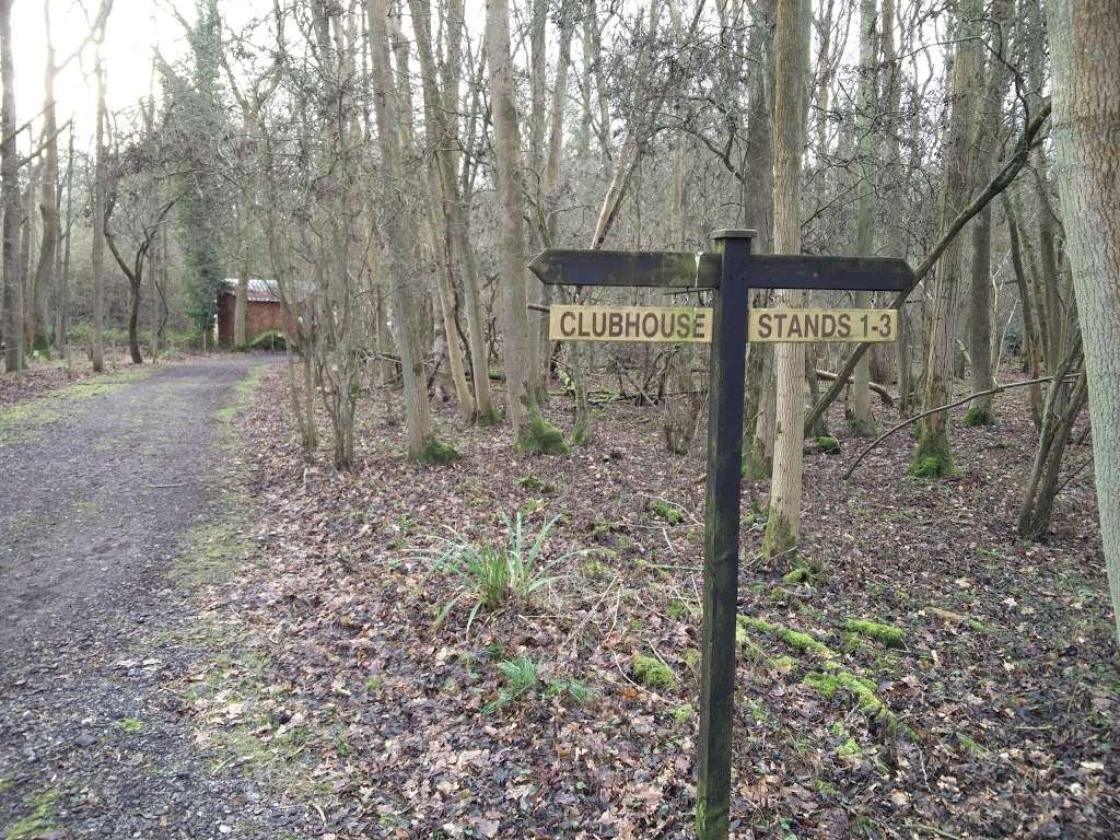 Woodland Pursuits - school    Photo 5 of 10   Address: Ironsbottom, Sidlow, Reigate RH2 8QG, UK   Phone: 07770 473020