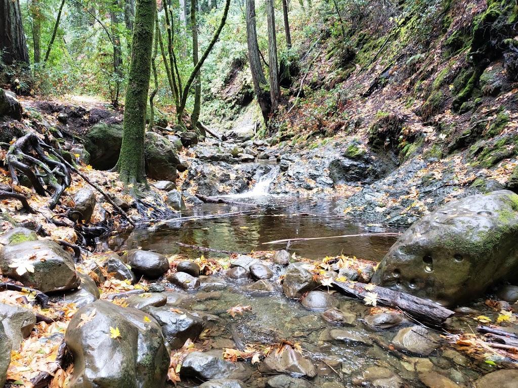 Sam Trail - park  | Photo 1 of 10 | Address: 15808 Sanborn Rd, Saratoga, CA 95070, USA