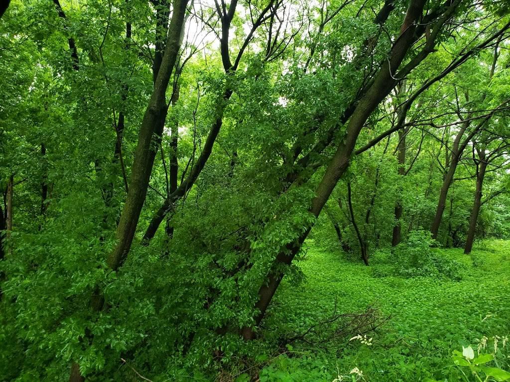 Carpenter - Ridgeway Park - park    Photo 6 of 9   Address: 1220 Carpenter St, Madison, WI 53704, USA   Phone: (608) 266-4711