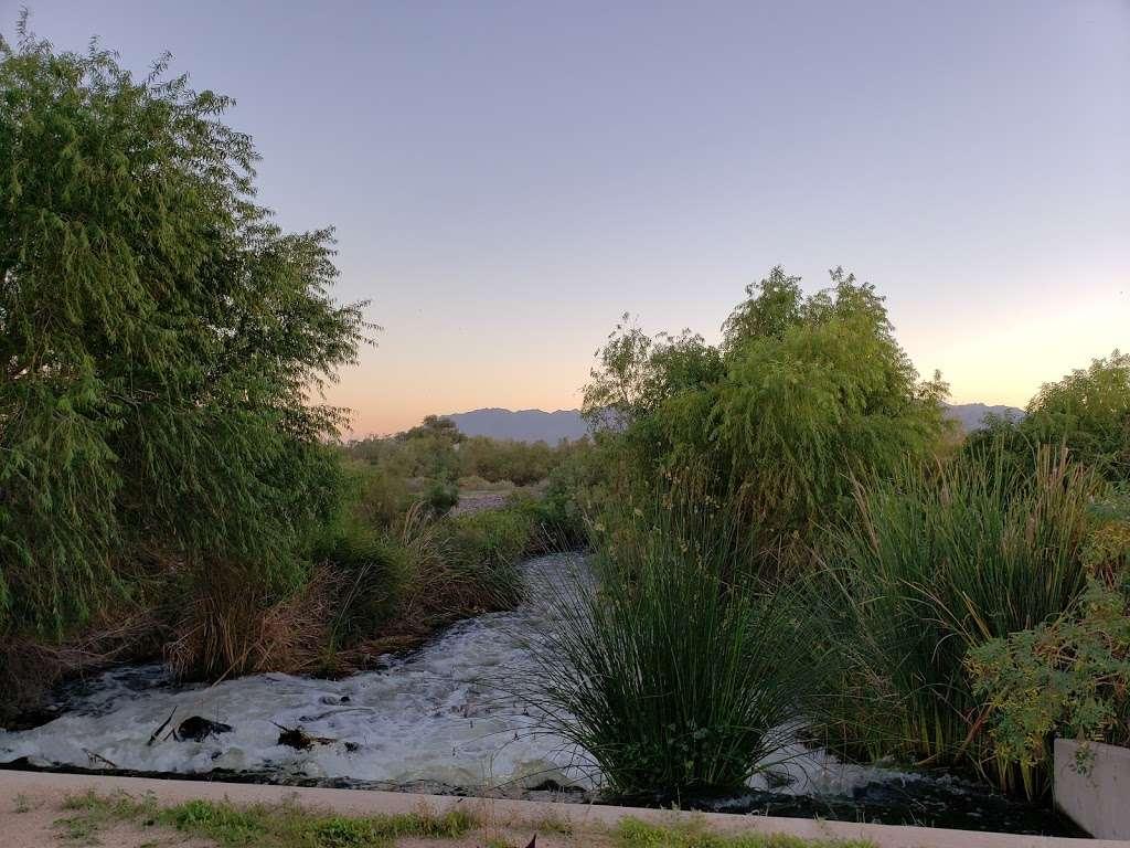 Tres Rios Wetlands Hayfield Site - park  | Photo 1 of 10 | Address: 8209 S 70th Ln, Laveen Village, AZ 85339, USA