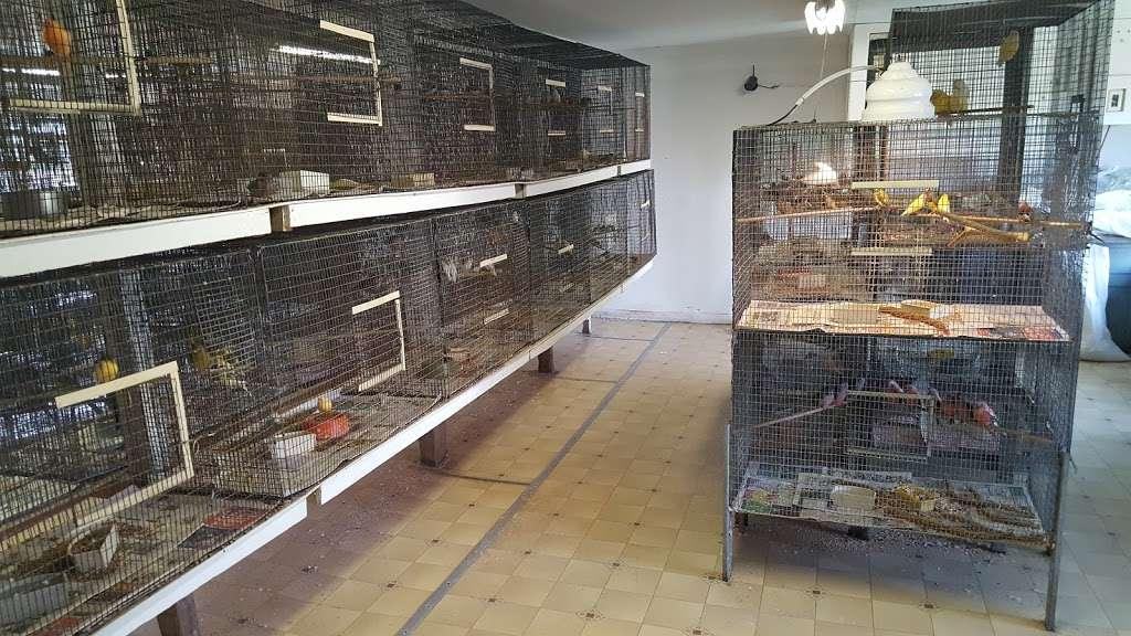 Stewarts Bird Farm - pet store  | Photo 2 of 10 | Address: 1560 Old Forty Foot Rd, Harleysville, PA 19438, USA | Phone: (215) 362-1123
