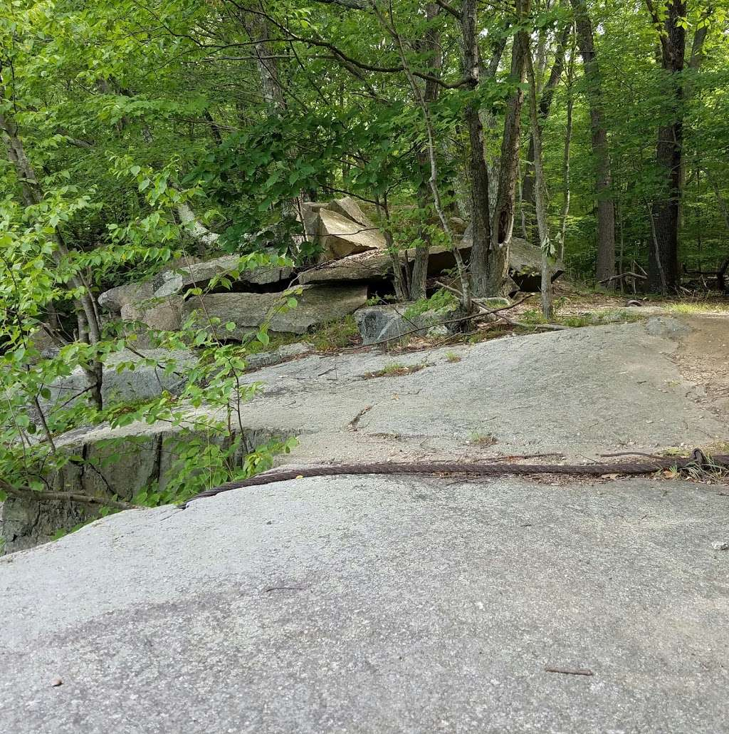 Sylvan Glen Nature Preserve - park  | Photo 6 of 10 | Address: Hunterbrook Rd, Mohegan Lake, NY 10547, USA | Phone: (914) 245-4650