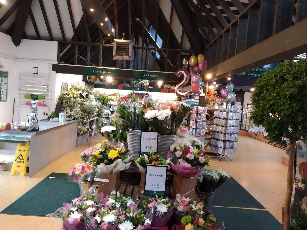 Woodcote Green - florist  | Photo 2 of 10 | Address: Woodcote Green Garden Centre & Nurseries, 4a Woodmansterne Ln, Wallington SM6 0SU, UK | Phone: 020 8647 6838