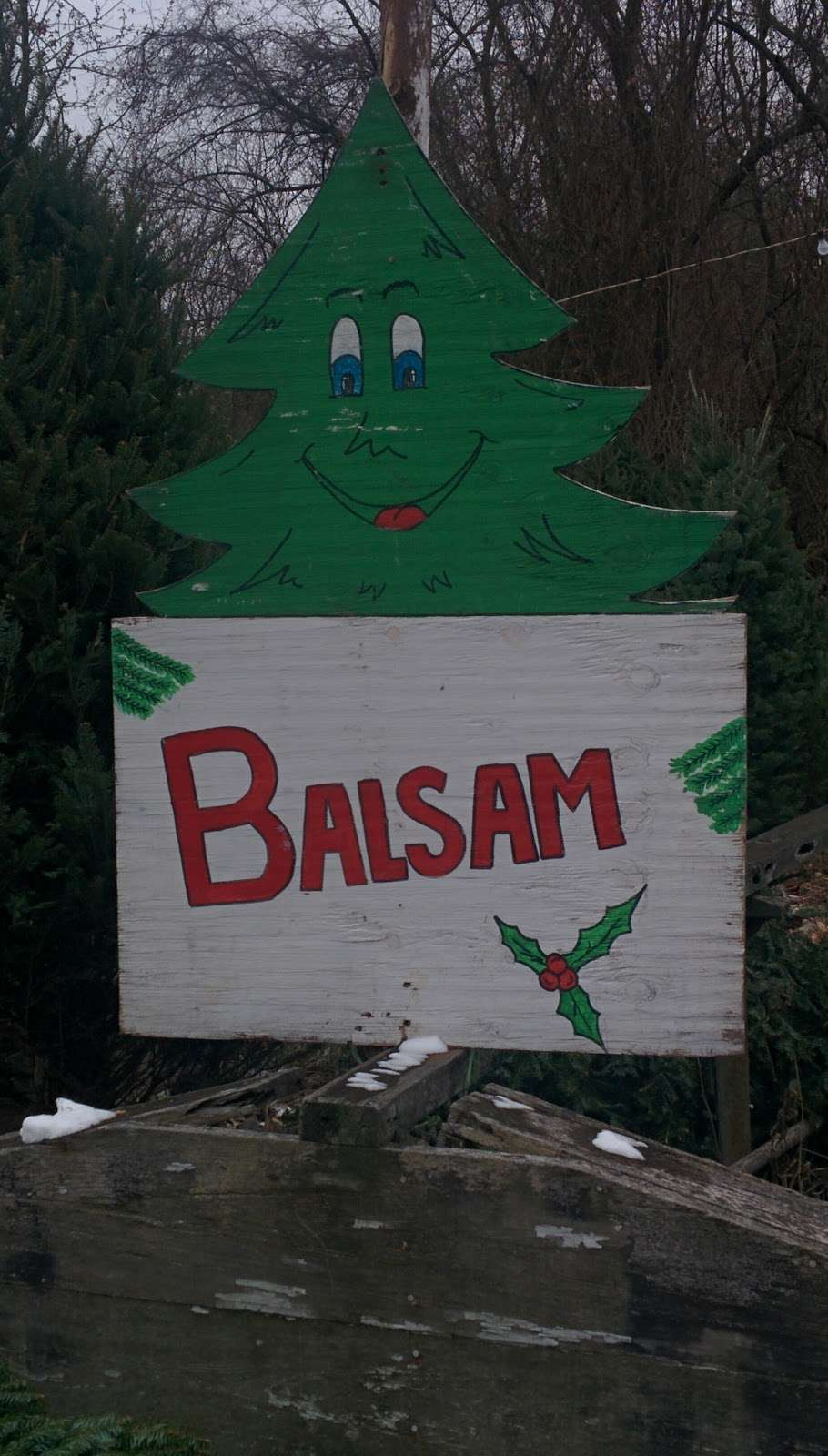 Bobs Tree Farm - home goods store  | Photo 4 of 4 | Address: 2-50 Ridge Rd, Wilmette, IL 60091, USA