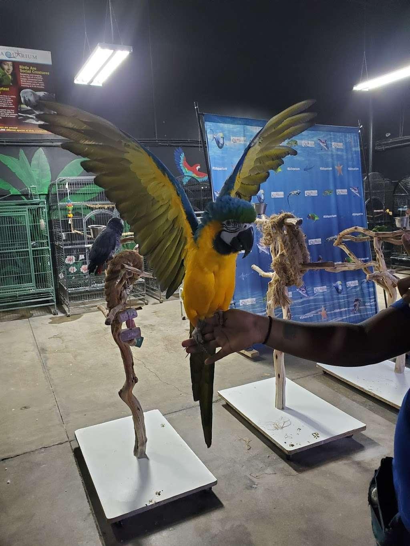 San Antonio Aquarium - aquarium  | Photo 9 of 10 | Address: 6320 Bandera Rd, Leon Valley, TX 78238, USA | Phone: (210) 310-3210