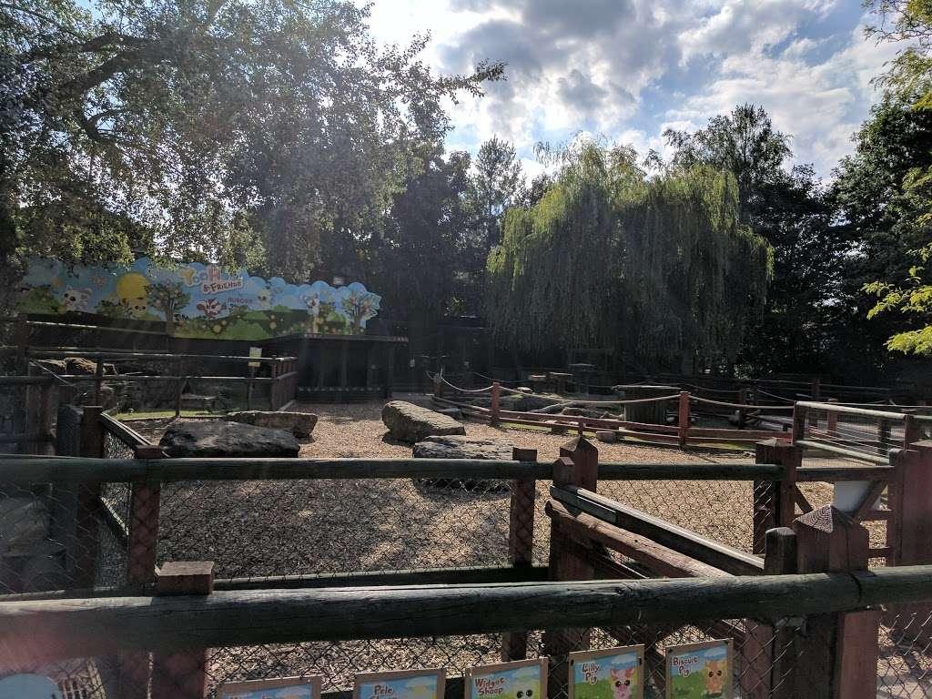 Yohoo and Friends - zoo  | Photo 4 of 4 | Address: Chessington Rd, Chessington, Epsom KT9 2NX, UK